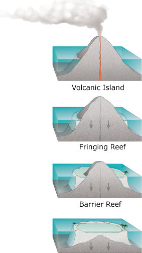 Darwin's theory set out a sequence of coral re...