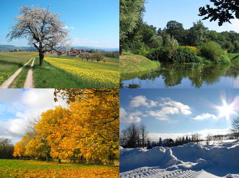 https://i1.wp.com/upload.wikimedia.org/wikipedia/commons/0/04/Four_seasons.jpg