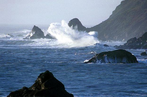 File:Redwood coast 02.jpg