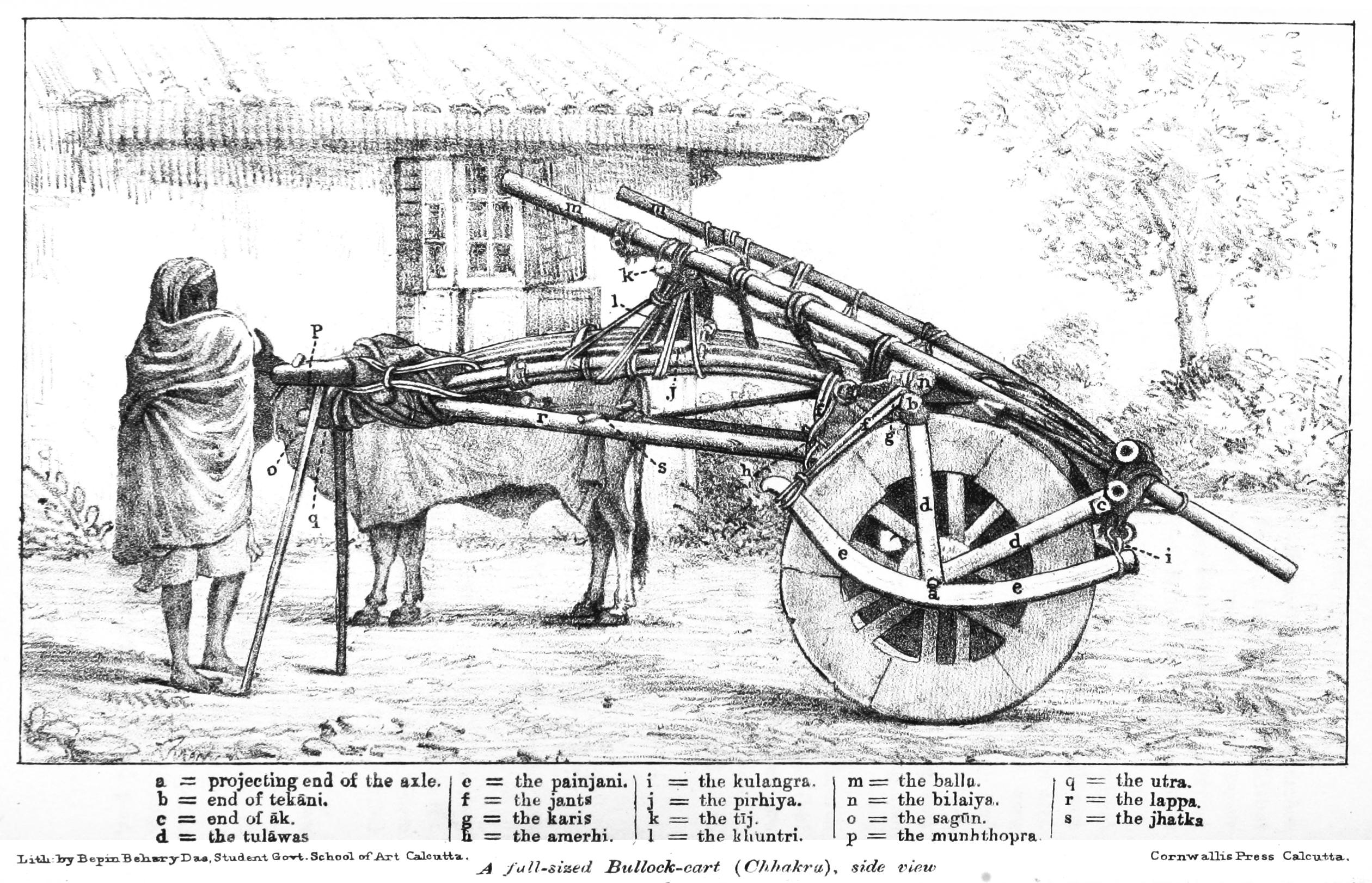 Wagon Horse Harness