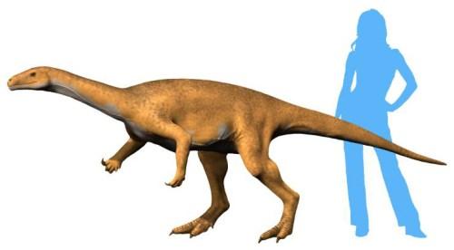 Bagualosaurus NT.jpg