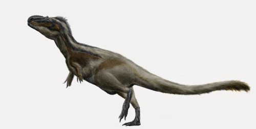 https://i1.wp.com/upload.wikimedia.org/wikipedia/commons/0/08/Daspletosaurus_torosus_by_durbed.jpg?resize=500%2C252&ssl=1