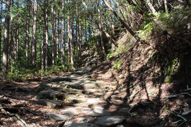 Kumano Kodo, the pilgrimage route in Kii Area