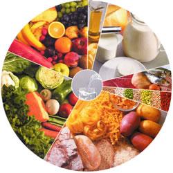 A nova roda dos alimentos