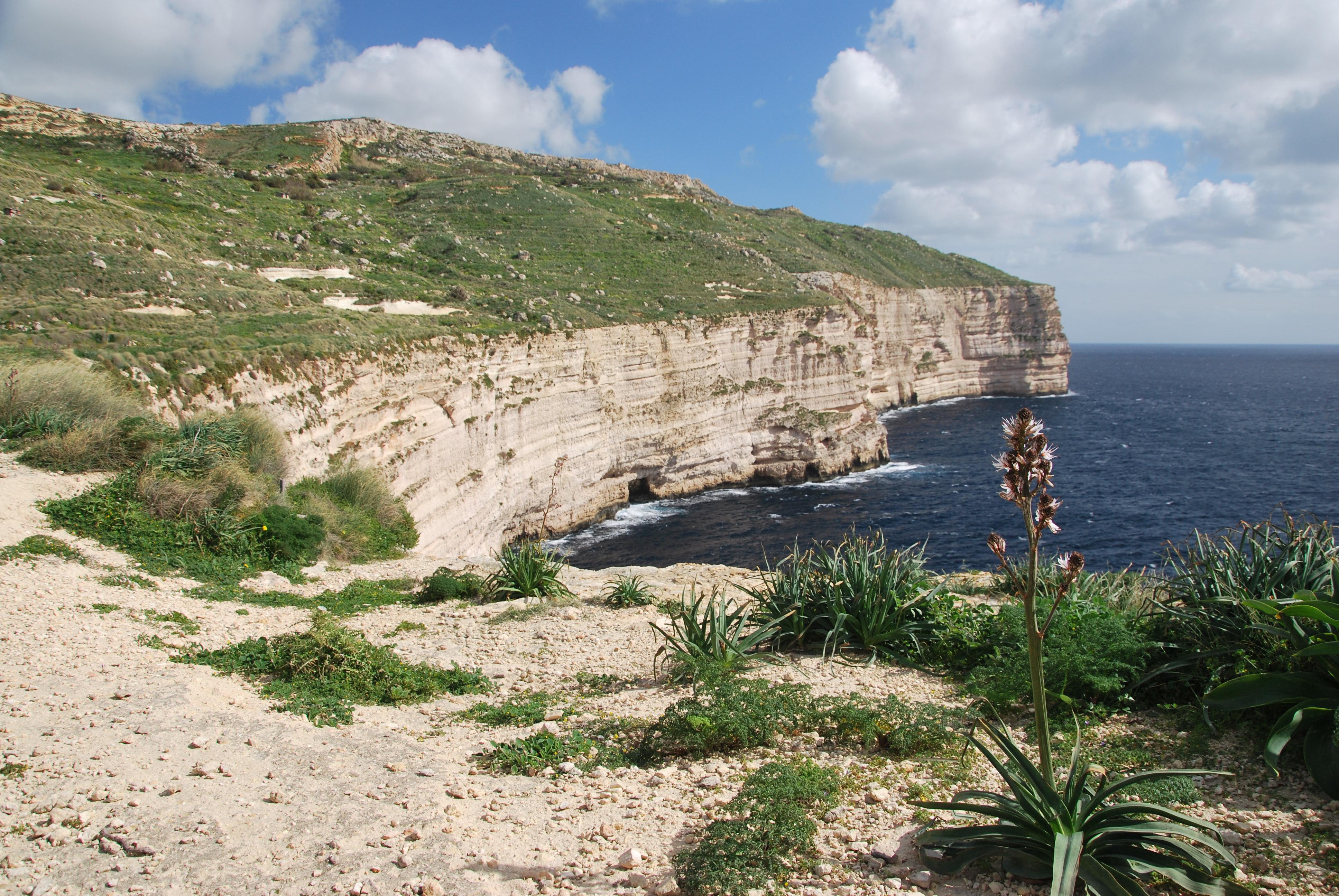 trekking dingli cliffs malta