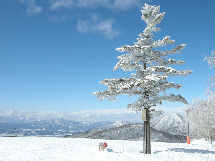 English: Shiga Kogen - Sun Valley - summit