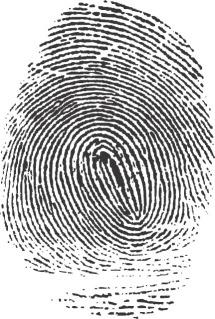 Fingerprintforcriminologystubs