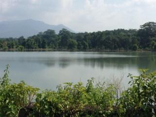A lake in Rajaji national park