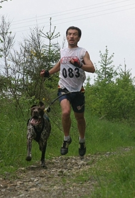 Canine Cross Country Running