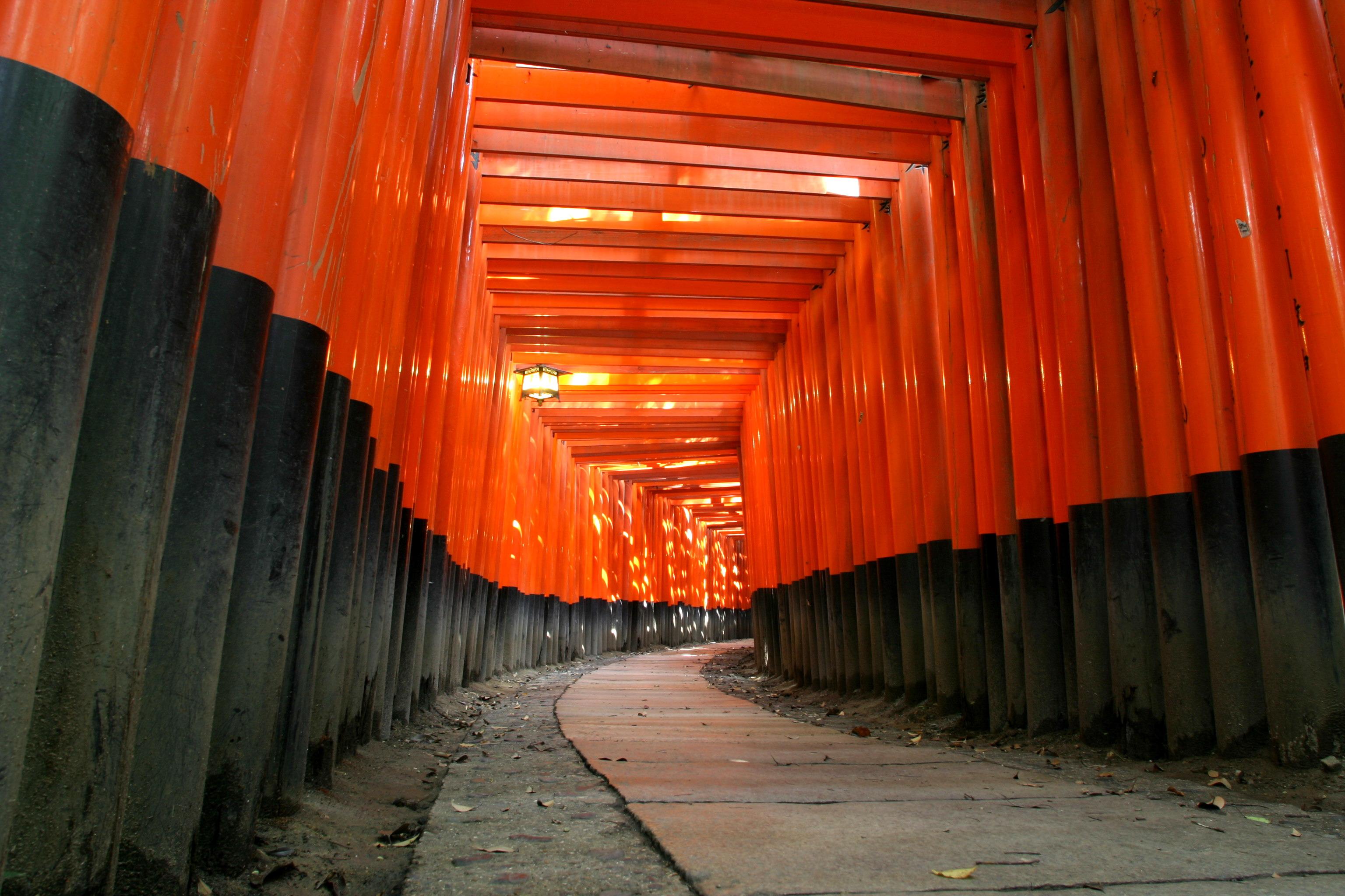 Example of torii from Fushimi Inari-taisha in Kyoto