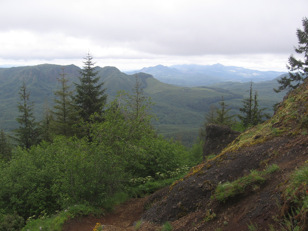 Mountain Range Closest to Redwood Forest