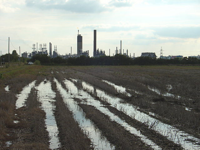 File:Soggy field - geograph.org.uk - 883524.jpg