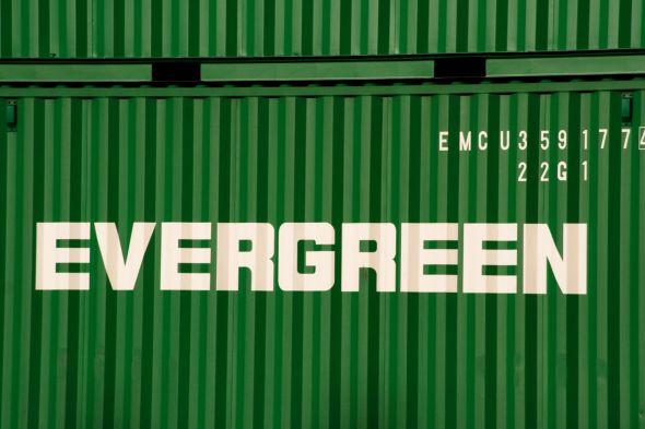 EverGreeen content