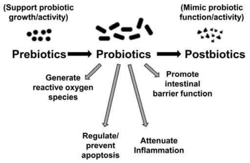 Pre-, pro- and postbiotics