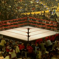 Constructing a WWE Ring