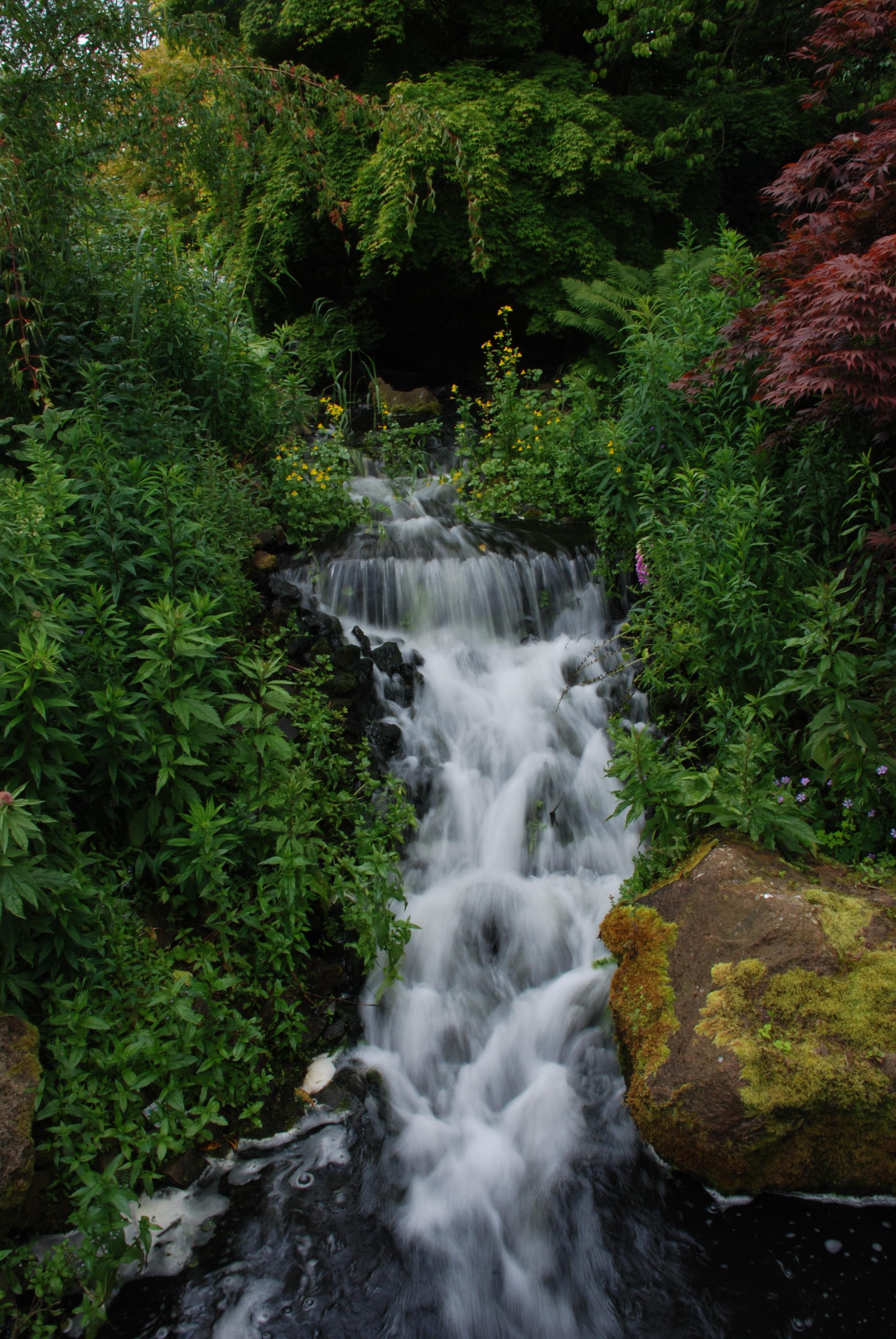File Waterfall Edinburgh Botanical Garden Jpg Wikimedia