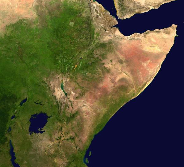 https://i1.wp.com/upload.wikimedia.org/wikipedia/commons/2/23/Nasa_Horn_of_Africa.JPG?resize=600%2C546&ssl=1