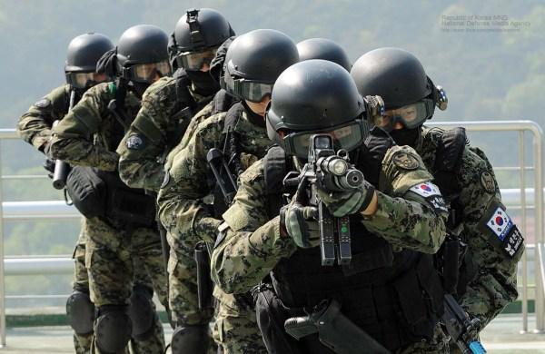 File:2013.5.8 수도방위사령부 수도 서울 생화학테러 대비 통합훈련 Republic of ...
