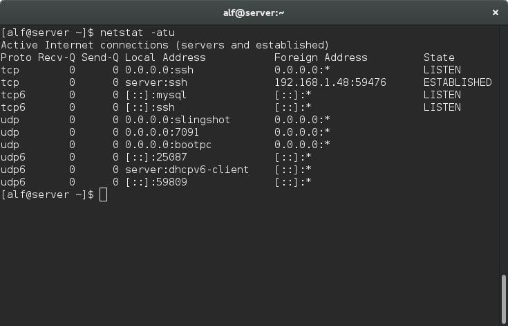 screenshot de xterm con la salida del comando ...