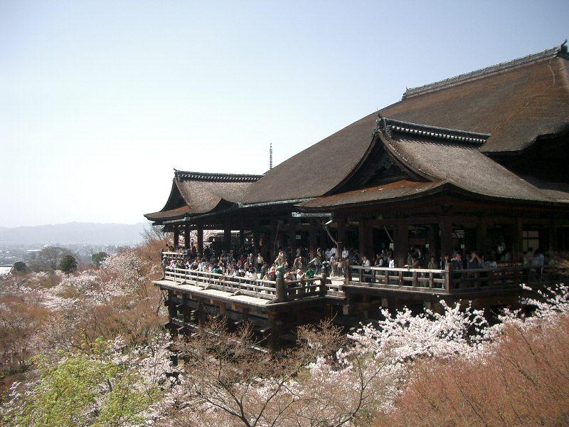 Kiyomizu-dera during sakura season