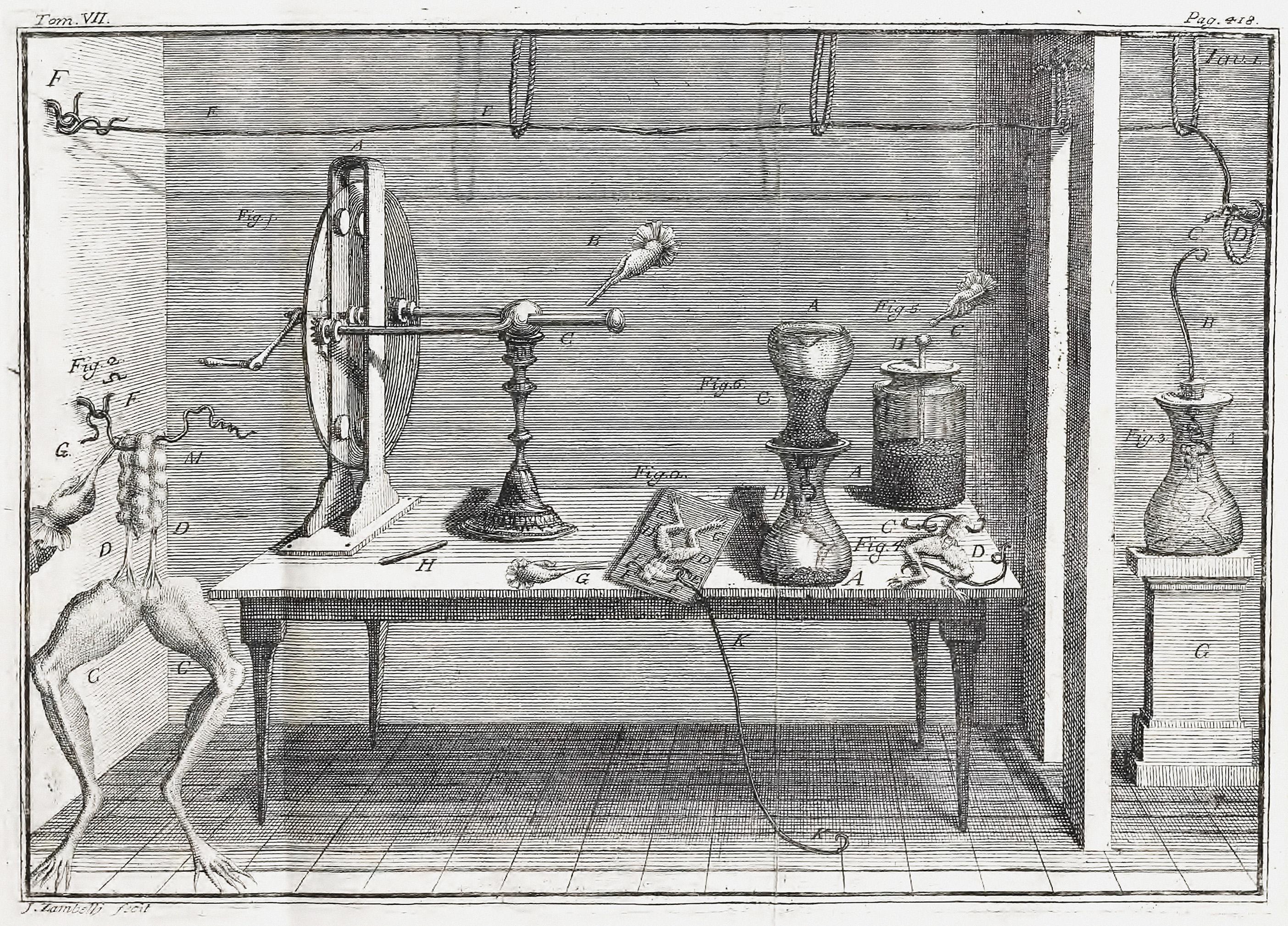 Image:Luigi Galvani Experiment.jpeg