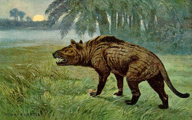 Recreación de un Hyenodon de la familia de los Hienodóntidos