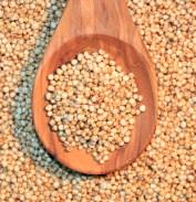 Resultado de imagem para quinoa