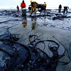 A beach after an oil spill.