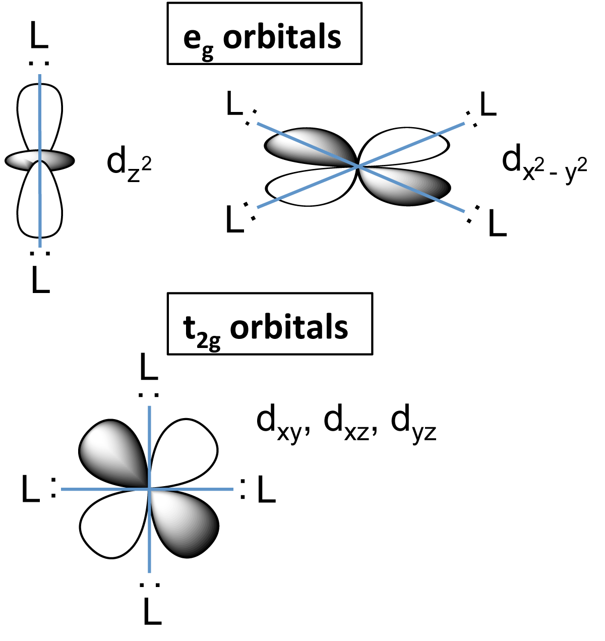 File D Orbital Splitting