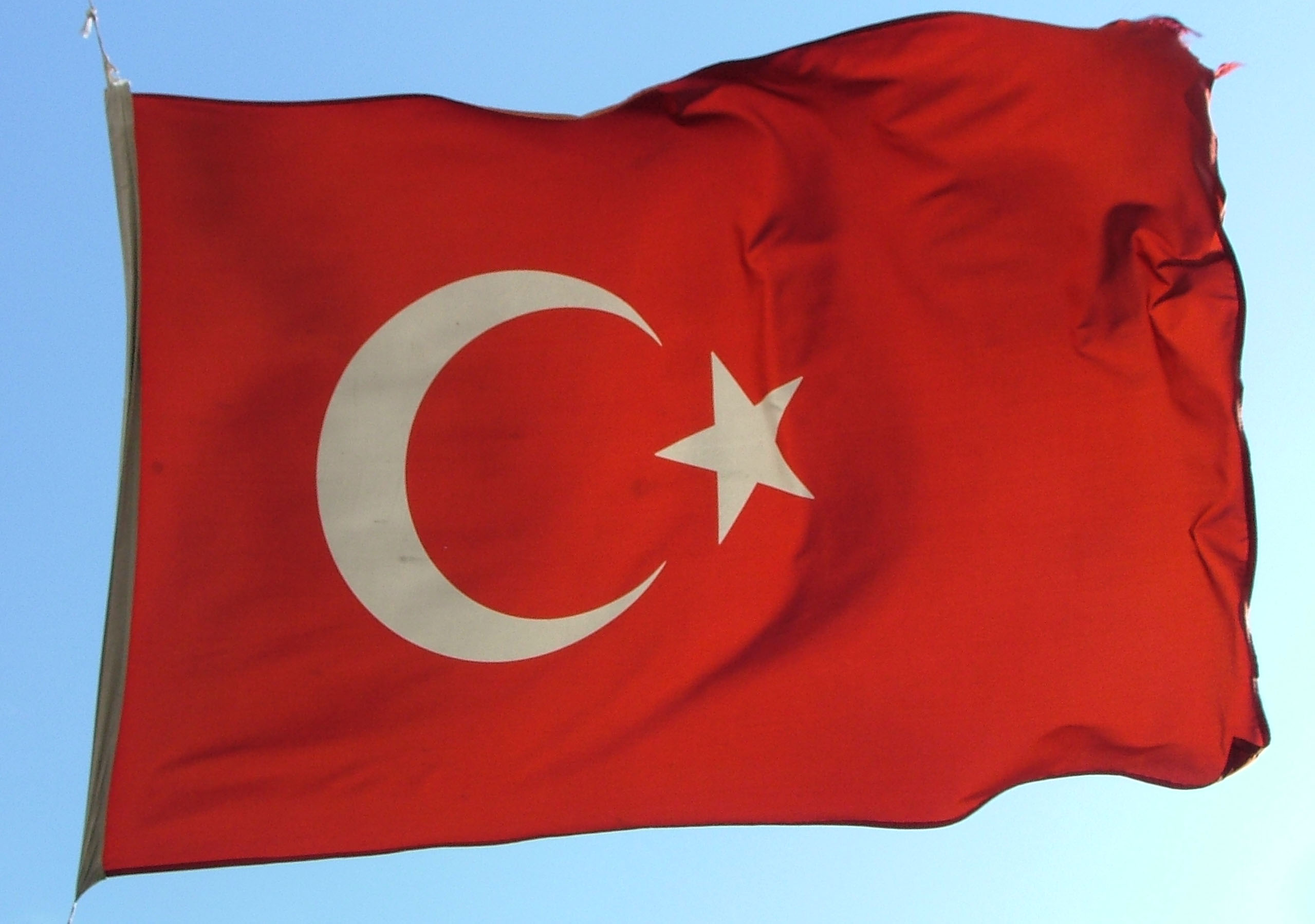 tukey flag in breeze