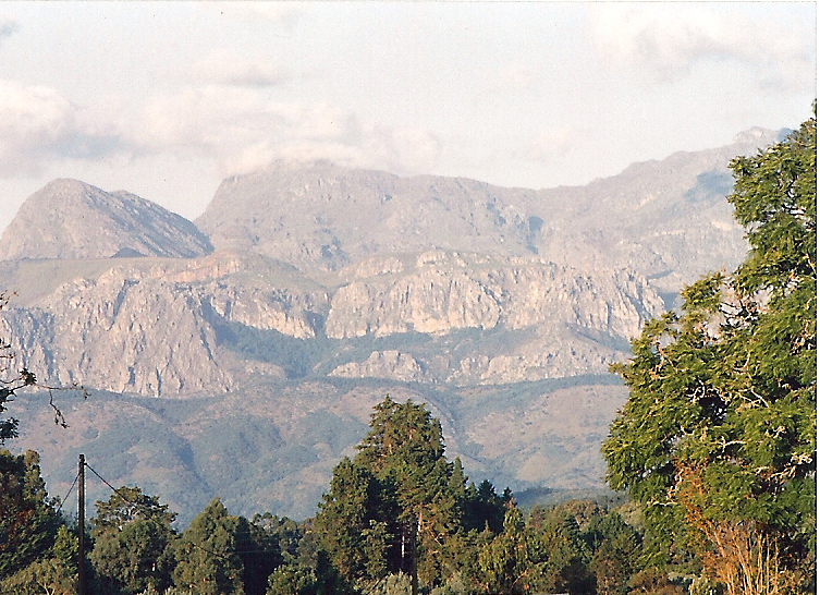 Image result for chimanimani