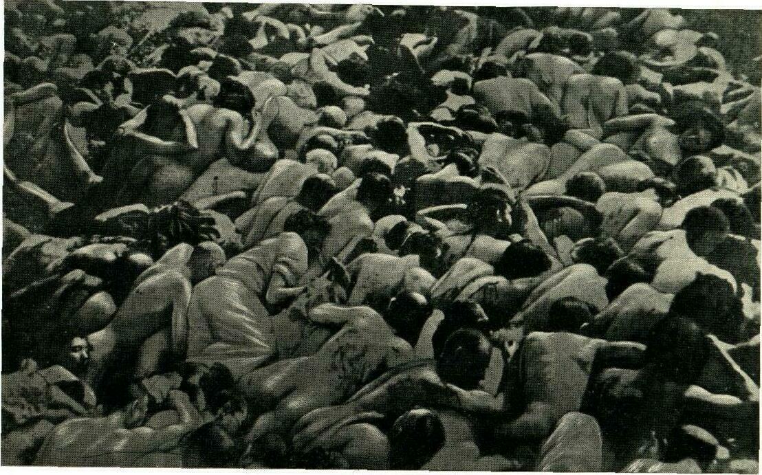 Jewish mass grave near Zolochiv, west Ukraine