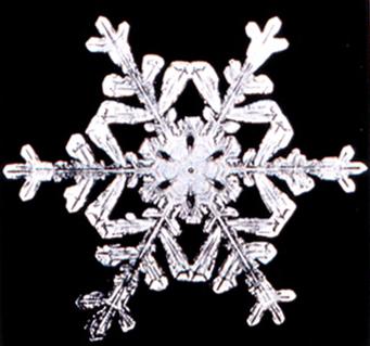 File:Snowflake8.png