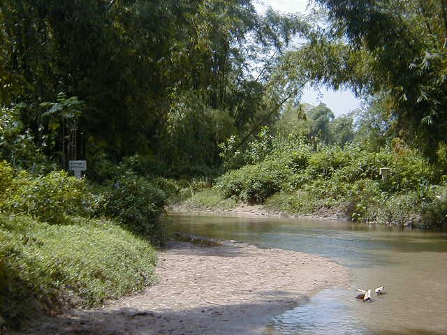 File:River2.jpg