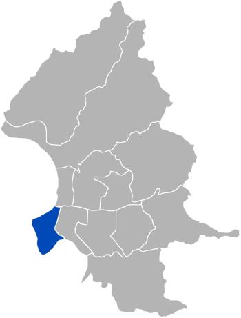 Wanhua Wikipedia