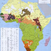George Murdock's map of the Ethnolinguistic groups of Africa