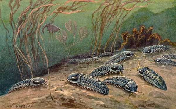 Paleozoic Wikipedia