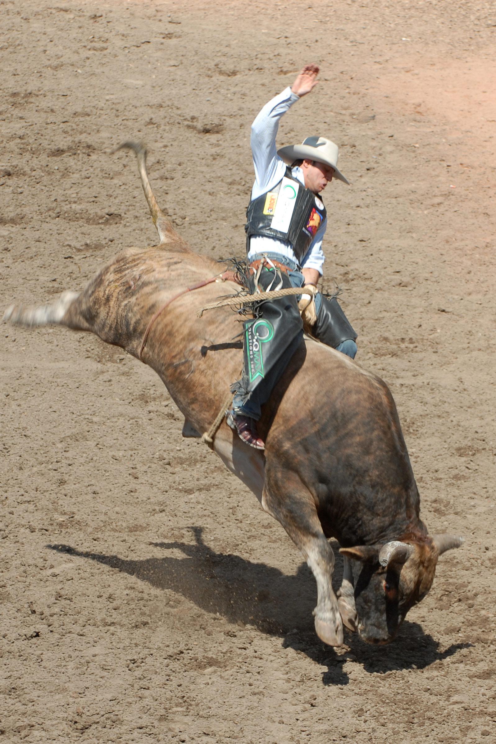 File Bull Riding2 Szmurlo Jpg Wikipedia