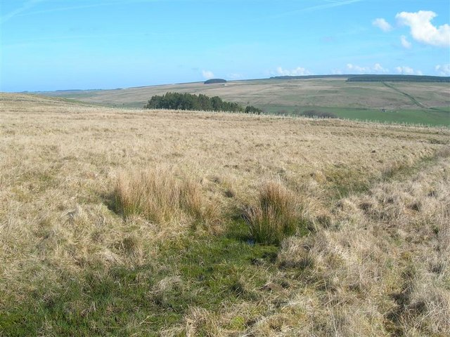 https://i1.wp.com/upload.wikimedia.org/wikipedia/commons/4/4b/Moorland_View_-_geograph.org.uk_-_791397.jpg