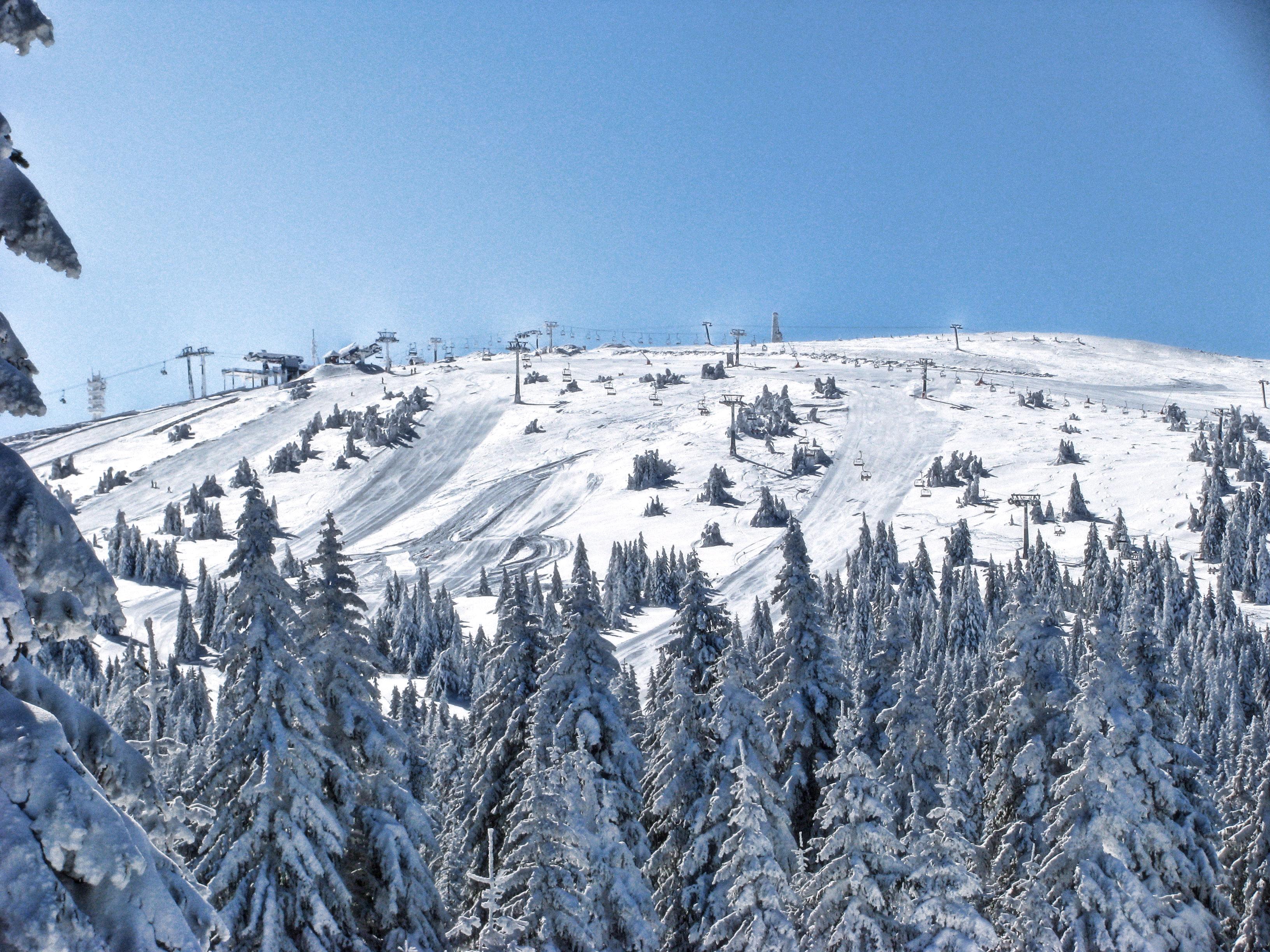 https://i1.wp.com/upload.wikimedia.org/wikipedia/commons/4/4c/Pan%C4%8Di%C4%87ev_vrh_during_winter.jpg