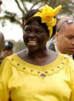 Fredrick Onyango photo of Wangari Maathai