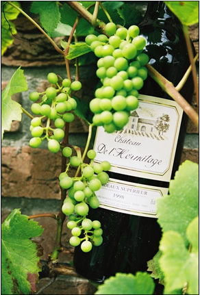 Wine: grapes and bottle, Chateau De L'Hermitag...