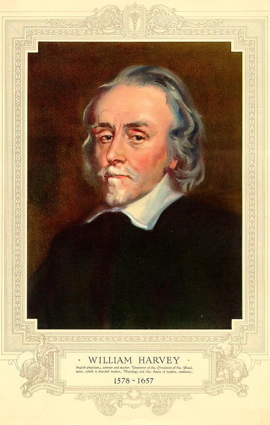William Harvey – Wikipedia