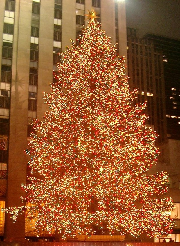 Merry christmas greetings for your use for season sms messages invite close relatives or friends under the mistletoe or singing along to white christmas remembering the true meaning of the yuletide season m4hsunfo
