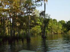 The Sabine River just below I-10. Photo : Stev...