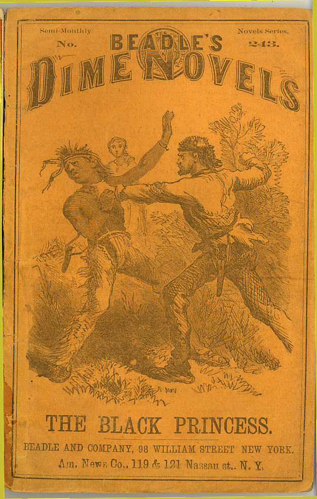 Beadles Dime Novels, the origin of a name
