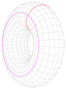 torus shown as product of circles