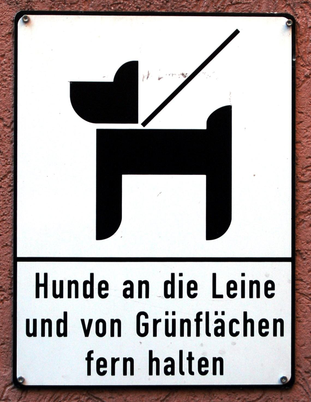 Dog Sign%2C Skarethof%2C Vienna The Best Dog Food For Pitbulls