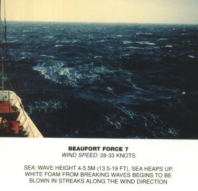 Beaufort scale 7.jpg