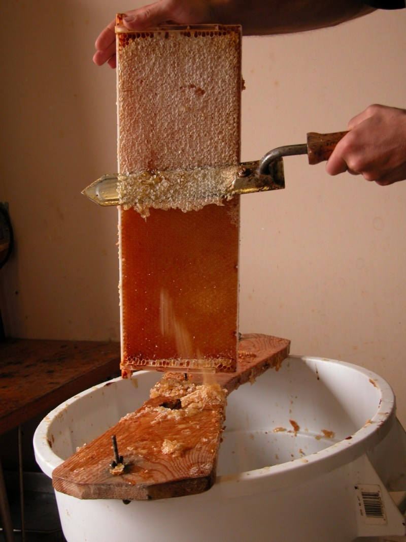 Image result for Gathering Natural Honey From The Beehive